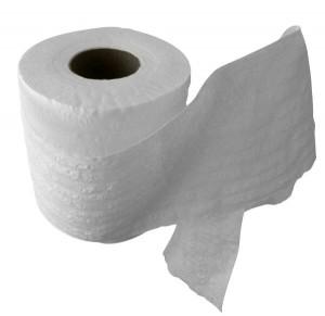 Toilet paper icebreaker